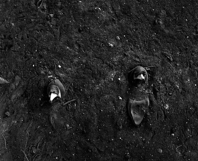 Emma Wilcox, The Field (Malquiladora) 2006, Gelatin silver print