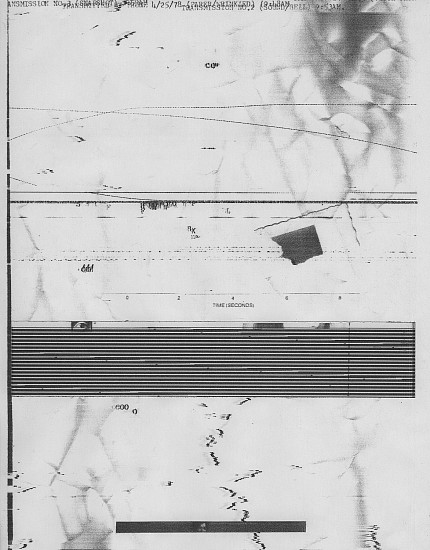 William Larson, Untitled, Fireflies series 25-Apr-78, Electro-carbon print