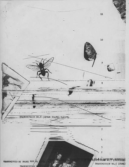 William Larson, Untitled, Fireflies series 24-Nov-75, Electro-carbon print
