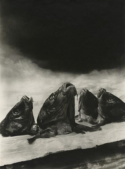 Aurel Bauh, Untitled c. 1930, Gelatin silver print