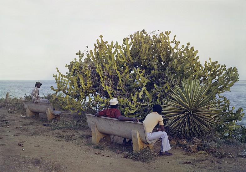 Adam Bartos, Mombasa, Kenya (park) 1980, Pigment print