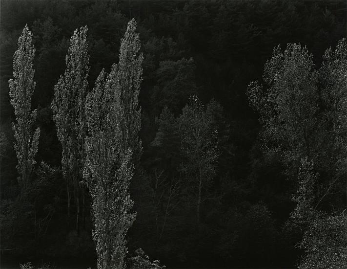 Kenneth Josephson, France 2001, Vintage gelatin silver print